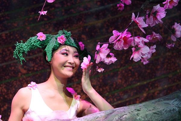 2013年4月29日至5月28日,该剧在中国木偶剧院和平谷影剧院成功演出,被誉为是一部具有创新价值的好剧、走进你我生活的儿童剧、将文化与科技相融合,将本土元素与时尚特色相结合,围绕未成年人思想道德教育为主题,体现孩子梦、未来梦、中国梦的儿童舞台艺术作品。今年5.1期间,《桃花公主》第二次在北京亮相,是中国木偶剧院向各界展示8年来文化体制改革成果的举措,同时也标志着《桃花公主》2014年商业演出的全面启动,除本轮演出和在全国巡演外,7月26日至27日《桃花公主》还将登上国家大剧院的舞台。 《桃花公