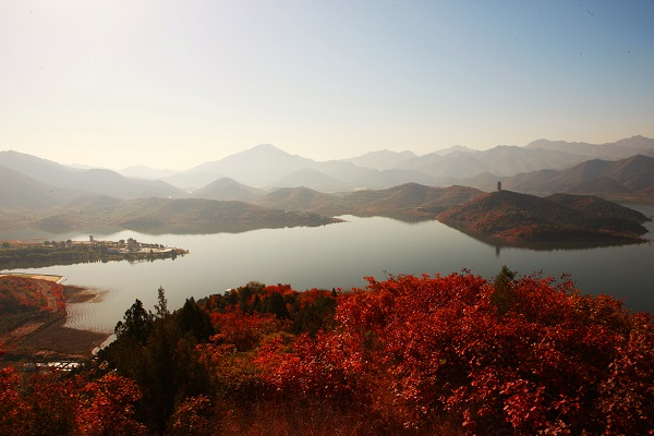 金秋时节,金海湖风景区的2万余亩